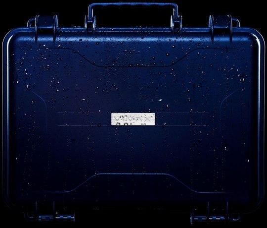 vivax_cases