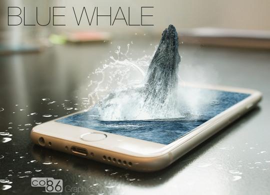 blue_whale