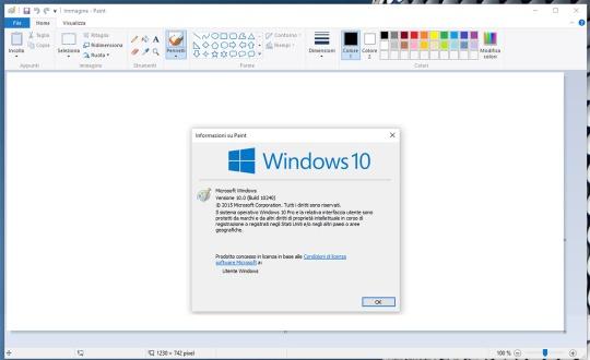 paint_windows_info