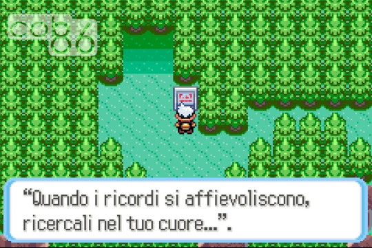 Isola_Remota_12_blog