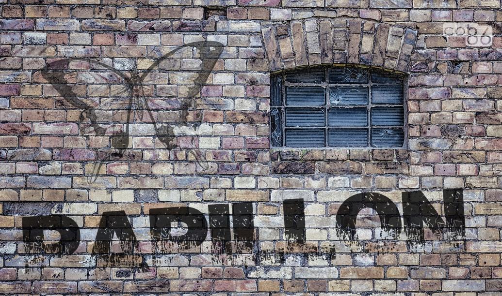 muro_papillon