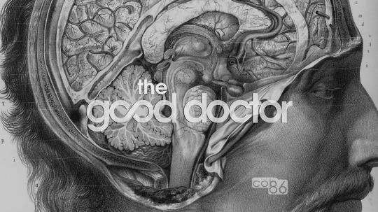 The_good_doctor_01